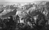 Late Afternoon At The North Rim-Grand Canyon, Arizona
