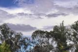 painted sky.jpg