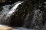 falls in light and shade.jpg