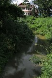 house and creek.jpg