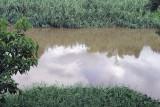 river banks.jpg