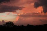 tropical skies.jpg