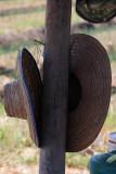 hang your hat.jpg