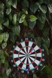 board and darts.jpg