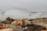 Ice creeping up on the shoreline