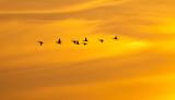 Goderich Sunset