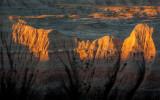 Badlands and Black Hills