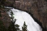 1728 - Grand Teton and Yellowstone NP road trip 2019 - IMG_3569 DxO pbase.jpg