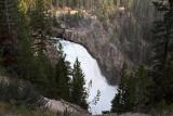 1737 - Grand Teton and Yellowstone NP road trip 2019 - IMG_3579 DxO pbase.jpg