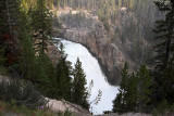 1739 - Grand Teton and Yellowstone NP road trip 2019 - IMG_3582 DxO pbase.jpg