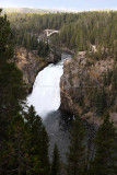 1750 - Grand Teton and Yellowstone NP road trip 2019 - IMG_3594 DxO pbase.jpg