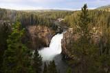 1758 - Grand Teton and Yellowstone NP road trip 2019 - IMG_3602 DxO pbase.jpg