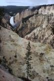 1786 - Grand Teton and Yellowstone NP road trip 2019 - IMG_3637 DxO pbase.jpg