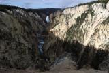 1803 - Grand Teton and Yellowstone NP road trip 2019 - IMG_3658 DxO pbase.jpg