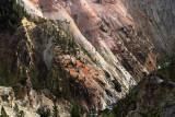 1808 - Grand Teton and Yellowstone NP road trip 2019 - IMG_3663 DxO pbase.jpg