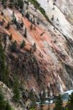 1821 - Grand Teton and Yellowstone NP road trip 2019 - IMG_3676 DxO pbase.jpg