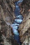 1826 - Grand Teton and Yellowstone NP road trip 2019 - IMG_3682 DxO pbase.jpg