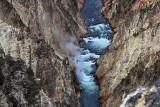 1829 - Grand Teton and Yellowstone NP road trip 2019 - IMG_3685 DxO pbase.jpg