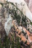 1848 - Grand Teton and Yellowstone NP road trip 2019 - IMG_3704 DxO pbase.jpg