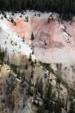 1853 - Grand Teton and Yellowstone NP road trip 2019 - IMG_3709 DxO pbase.jpg