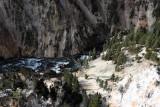 1892 - Grand Teton and Yellowstone NP road trip 2019 - IMG_3761 DxO pbase.jpg