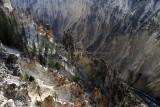 1894 - Grand Teton and Yellowstone NP road trip 2019 - IMG_3765 DxO pbase.jpg