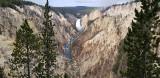 1905 - Grand Teton and Yellowstone NP road trip 2019 - 20190830_083536 DxO pbase.jpg