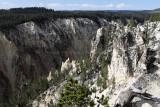 1914 - Grand Teton and Yellowstone NP road trip 2019 - IMG_3785 DxO pbase.jpg