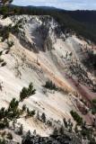 1917 - Grand Teton and Yellowstone NP road trip 2019 - IMG_3789 DxO pbase.jpg