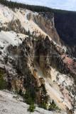 1927 - Grand Teton and Yellowstone NP road trip 2019 - IMG_3798 DxO pbase.jpg