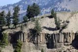 1962 - Grand Teton and Yellowstone NP road trip 2019 - IMG_3829 DxO pbase.jpg