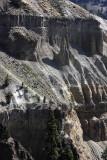 1966 - Grand Teton and Yellowstone NP road trip 2019 - IMG_3830 DxO pbase.jpg