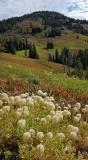 1984 - Grand Teton and Yellowstone NP road trip 2019 - 20190830_175718 DxO pbase.jpg