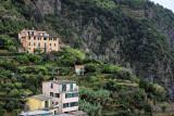 1316 D'couverte des Cinque Terre - IMG_4183_DxO Pbase.jpg