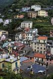 1330 D'couverte des Cinque Terre - IMG_4199_DxO Pbase.jpg