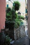1331 D'couverte des Cinque Terre - IMG_4200_DxO Pbase.jpg