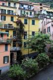 1348 D'couverte des Cinque Terre - IMG_4219_DxO Pbase.jpg