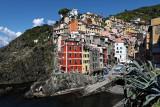 1368 D'couverte des Cinque Terre - IMG_4239_DxO Pbase.jpg