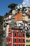 1381 D'couverte des Cinque Terre - IMG_4254_DxO Pbase.jpg