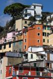 1426 D'couverte des Cinque Terre - IMG_4305_DxO Pbase.jpg