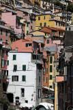 1427 D'couverte des Cinque Terre - IMG_4307_DxO Pbase.jpg