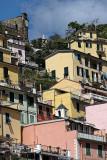 1435 D'couverte des Cinque Terre - IMG_4320_DxO Pbase.jpg