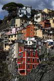 1456 D'couverte des Cinque Terre - IMG_4346_DxO Pbase.jpg