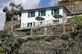 1461 D'couverte des Cinque Terre - IMG_4353_DxO Pbase.jpg