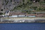 1492 D'couverte des Cinque Terre - IMG_4387_DxO Pbase.jpg