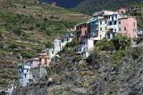 1495 D'couverte des Cinque Terre - IMG_4390_DxO Pbase.jpg