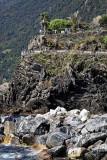 1503 D'couverte des Cinque Terre - IMG_4401_DxO Pbase.jpg