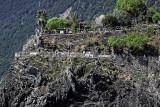 1509 D'couverte des Cinque Terre - IMG_4408_DxO Pbase.jpg