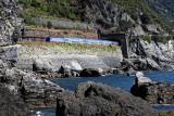 1510 D'couverte des Cinque Terre - IMG_4409_DxO Pbase.jpg