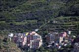 1524 D'couverte des Cinque Terre - IMG_4423_DxO Pbase.jpg